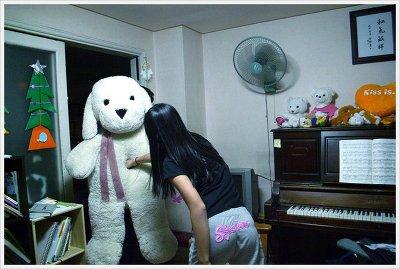 큰 강아지_펀치