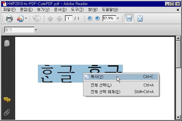 Adobe Reader에서의 복사 화면