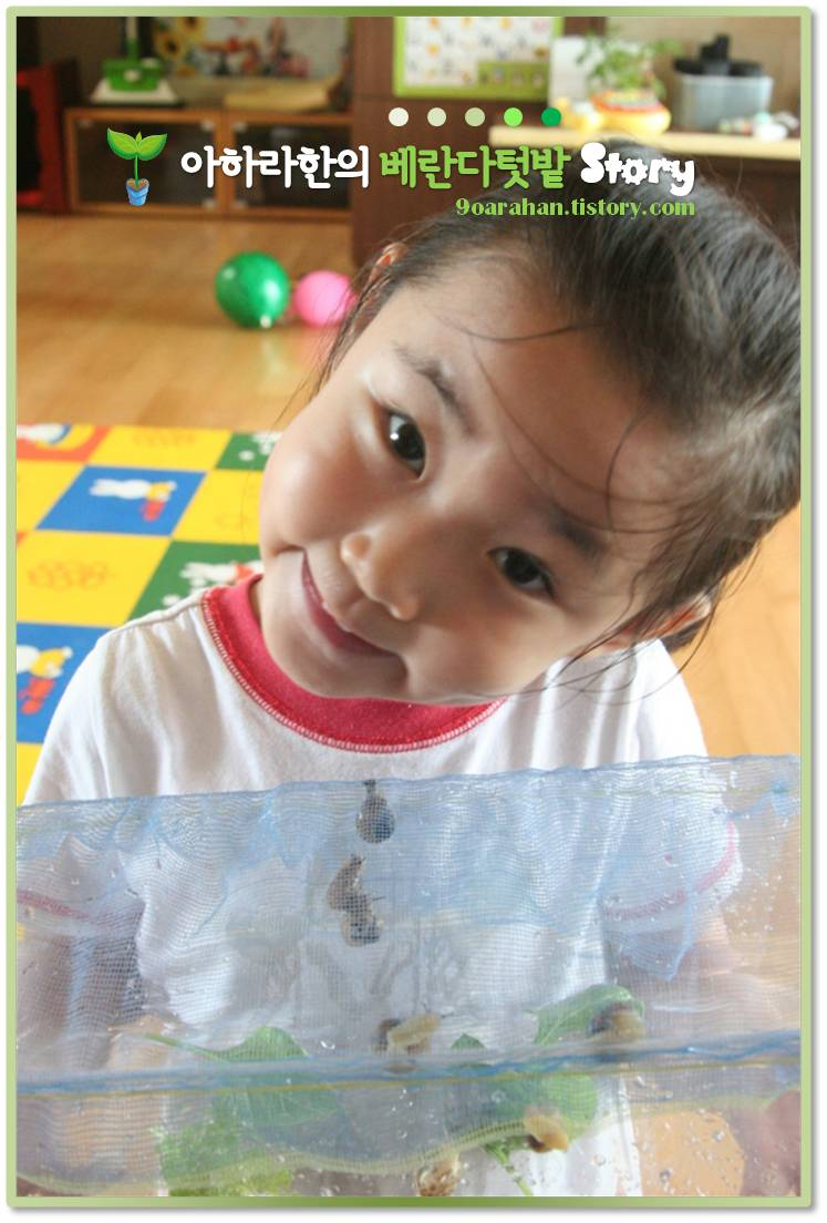 달팽이 키우기, 하루만에 포기한 사연