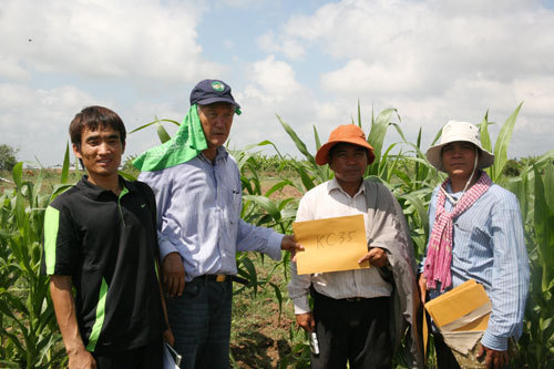 캄보디아 옥수수육종