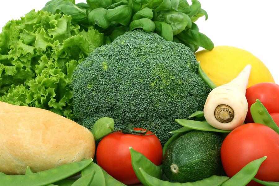 브로콜리와 여러가지 야채 모습