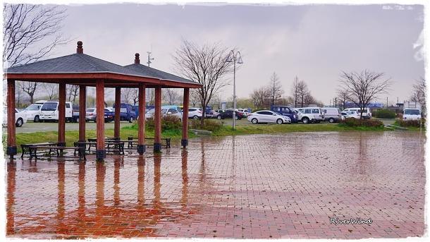비오는 삼락공원