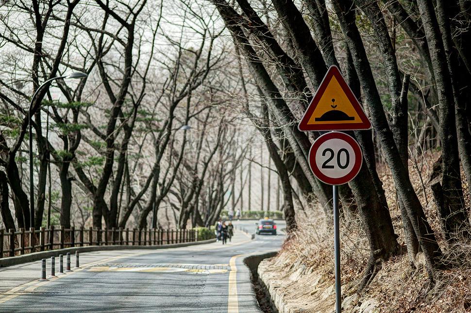 남산올라가는 도로에서 만난 표지판. 과속방지턱 그림위에 꽃이 그려져있는게 특이하다.