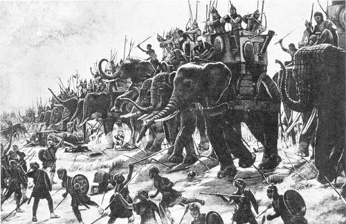 전투코끼리 War Elephants