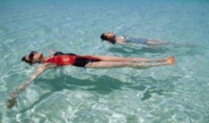 수영배우기