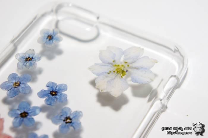 아이폰6, 생화, 케이스, 에코홀릭, 후기, 꽃무늬, 소녀감섬