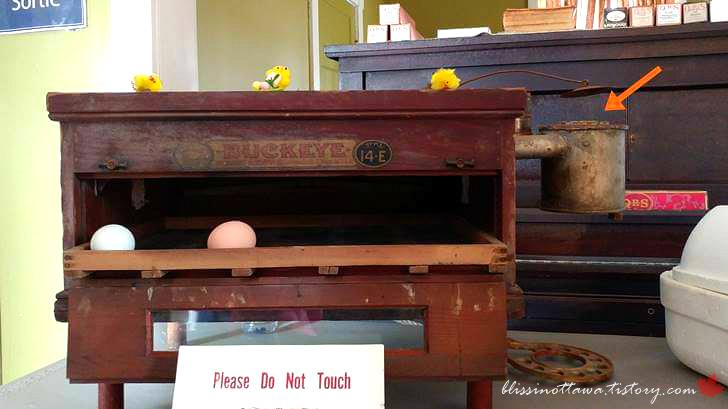 1800년대 달걀 인큐베이터입니다