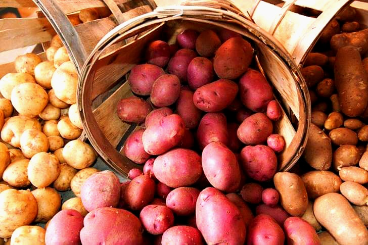 프린세스 에드워드 아일랜드 주는 감자가 유명합니다