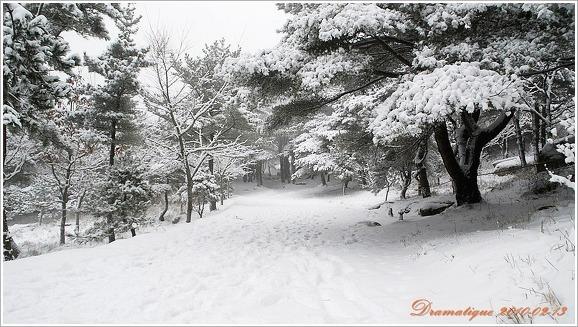 눈온날 보는 금정산 등산로