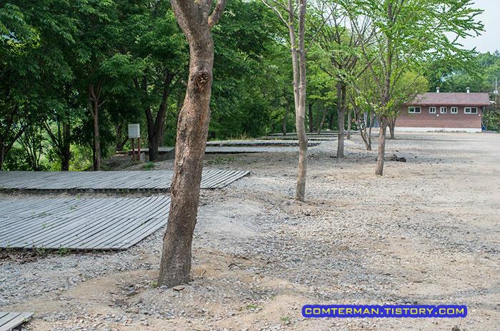 옥화자연휴양림 캠핑장 리뷰 Camping