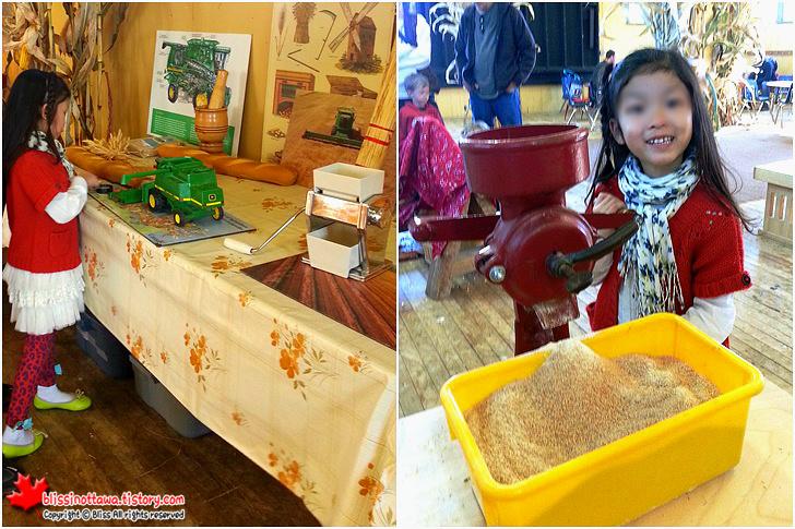 캐나다 농업 식품 박물관 가을 추수 이벤트 통밀 갈기