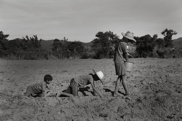 미얀마의 가려진 소수민족, 사탕수수 플랜테이션의 카렌족 노동자들①