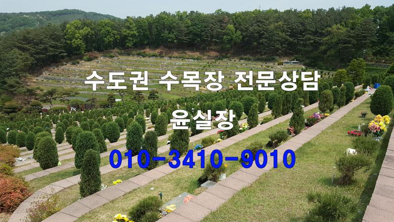 용인 수목장 추천