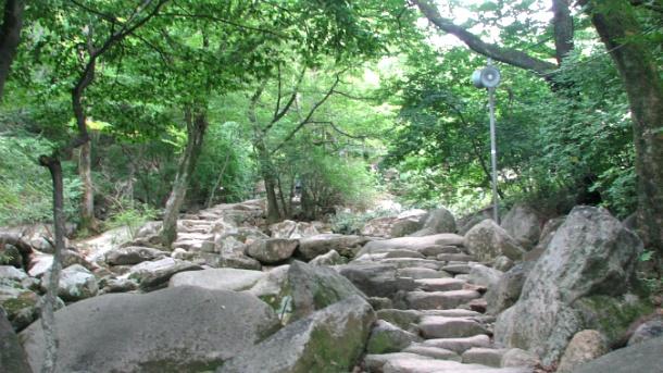 금정산 등산 범어사 코스