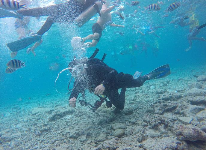 바닷속에서 물고기와 함께 스쿠버다이빙