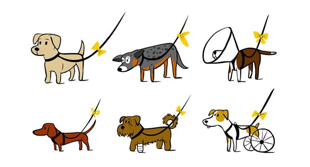 반려동물, 반려견, 유기동물, 유기견, 폴랑폴랑, 동물치유, 치유동물, 동물심리치료