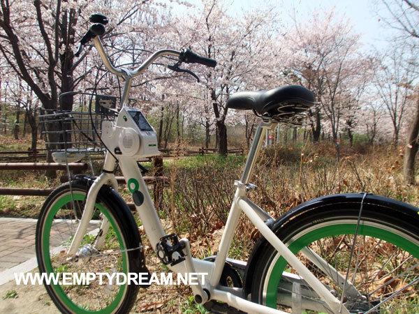 따릉이로 서울여행 꽃놀이 즐기기 - 서울시 공공자전거 따릉이