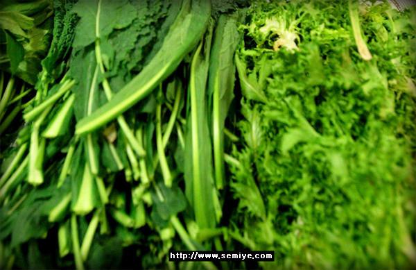 야채샐러드 야채주스 야채 채소 야채탈수기 채소 보관법 채소류 채소 종류 제철과일 과일샐러드 과일화채 냉장고정리 냉장고정리용기 냉장고리폼 야채 종류별로 보관하는 방법