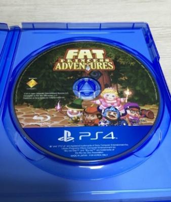펫 프린세스 어드벤처 Fat Princess Adventures