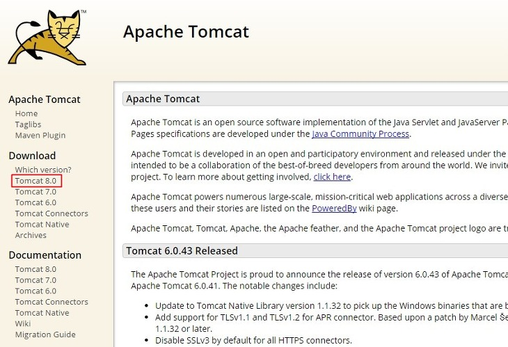 아파치 톰캣, Apache Tomcat, 톰캣 설치, 톰캣 실행, JSP 컨테이너, 서블릿 컨테이너, 웹 컨테이너, 웹 어플리케이션 서버 구축, WAS, JSP 개발환경, Servlet 개발환경, JSP 웹 서버