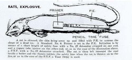 생쥐폭탄 설계도 Exploding Rats