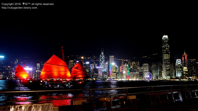 홍콩 여행 / 담각대로 담아본 세계 최고 야경 홍콩 하버 / Hong Kong Night Scene