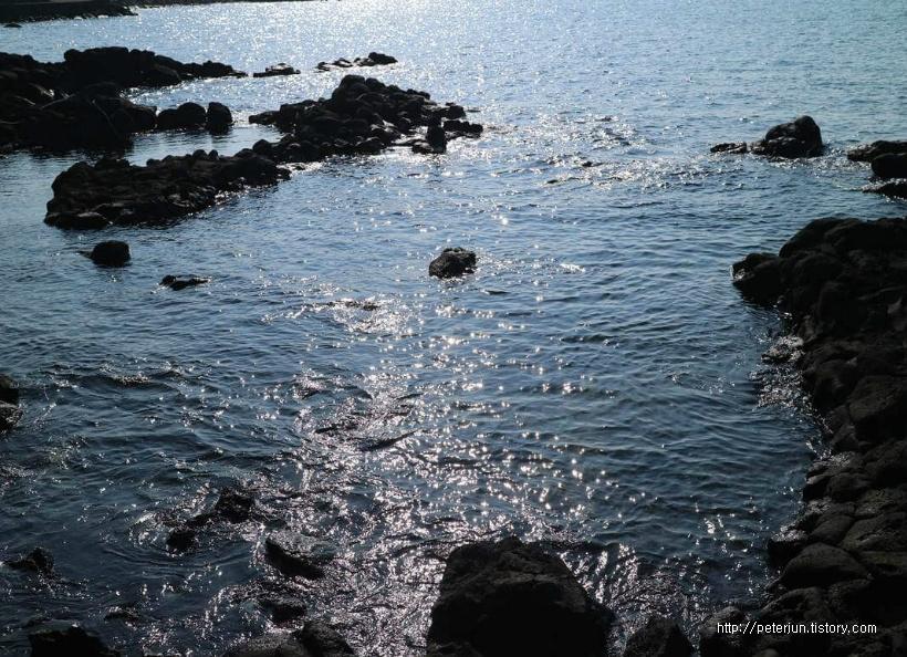 햇살 내리쬐는 바다