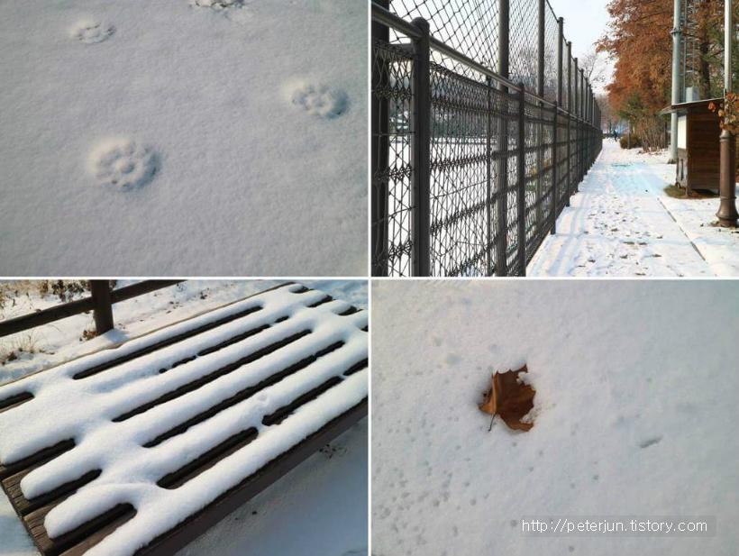 혼자만의 힐링 겨울산책