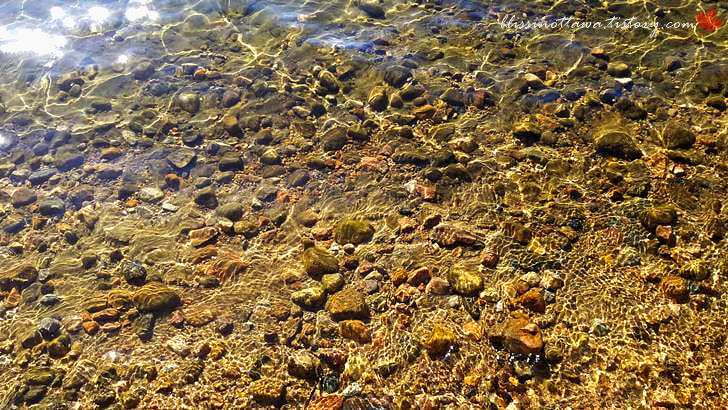 맑은 호숫물입니다