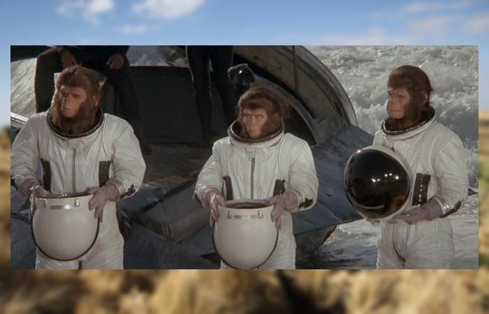 사진: 혹성탈출3에서 과거의 지구에 불시착하게 된 코넬리어스 박사의 일행. 처음엔 안전을 위해 지능이 낮은 원숭이인 척을 했다. [혹성탈출 시리즈 - 혹성탈출3의 줄거리와 결말]