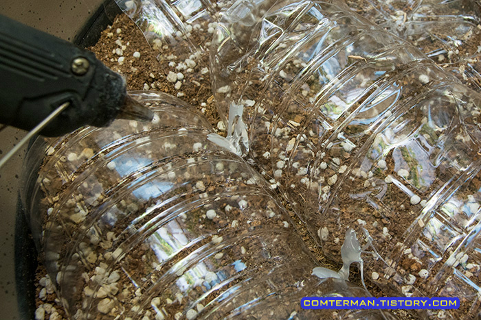 페트병 화분 덮개