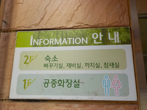 대전 여행지 숙소 추천 장태산 자연휴양림