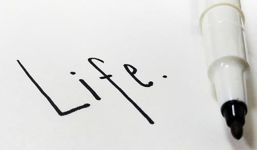 인간의 삶