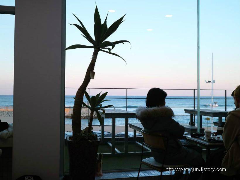 강문해변 카페