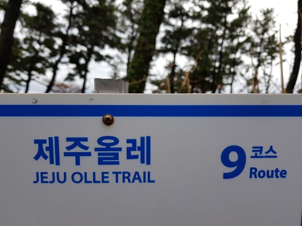 [제주올레 걷기여행]9코스(1)