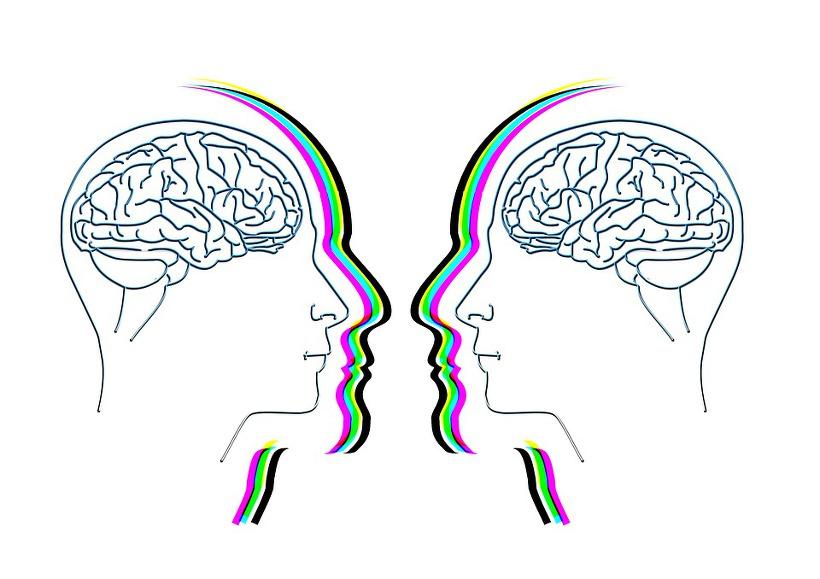 사람 뇌 그래픽