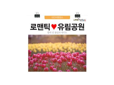 대전데이트명소 아름다운 튤립 활짝 핀 유림공원