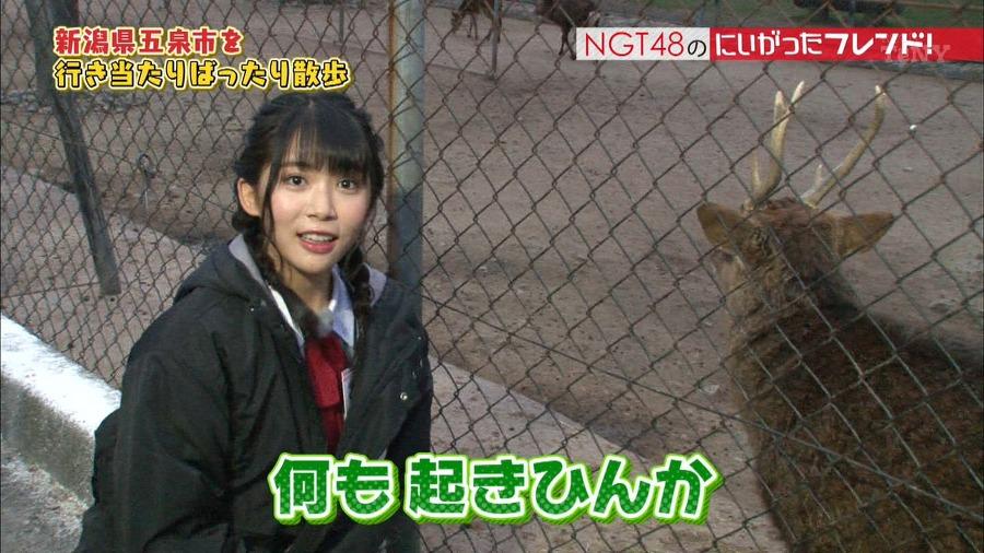 171128 NGT48のにいがったフレンド! ep46 :: AKB48 乃木坂46 動画