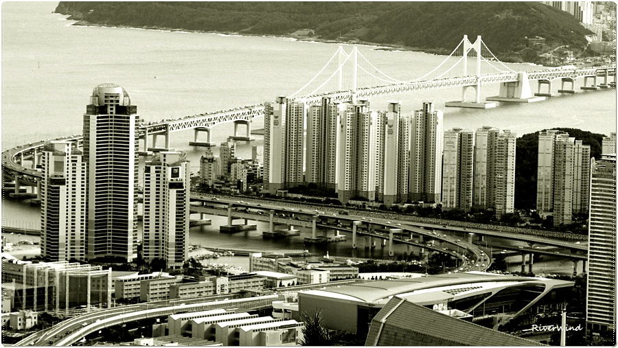 흑백으로 보는 도시풍경